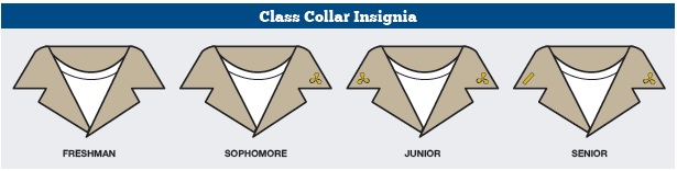 Collar by class